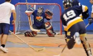 hockey-keeper1