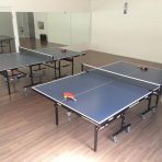 Tennis de table (Ping-pong)